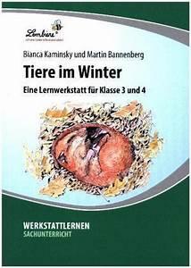 Schmetterlinge überwintern Helfen : tiere im winter zvab ~ Yasmunasinghe.com Haus und Dekorationen