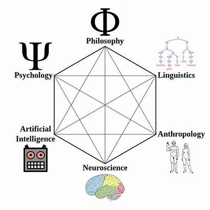 Cognitive Science Wikipedia Hexagon Wiki Wikimedia