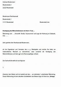 Fristgerechte Kündigung Mietvertrag : vermieter paket abmahnungen k ndigung sofort download ~ Watch28wear.com Haus und Dekorationen