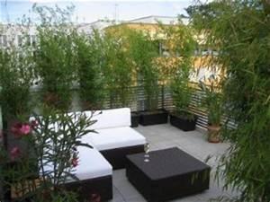 Balkon Sichtschutz Gras : sichtschutz bambus balkon new balcony terrace ~ Michelbontemps.com Haus und Dekorationen