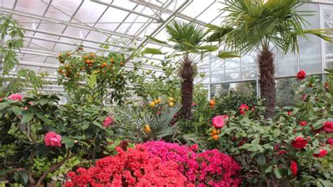 Schmidbauer Botanischer Garten München by Botanischer Garten Muenchen 01 03 2015