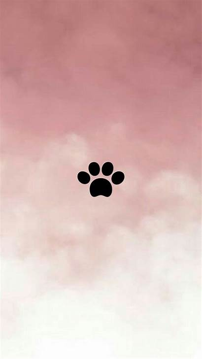 Pet Insta Backgrounds Icon Aesthetic Snapchat Feed