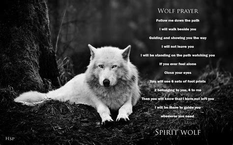 Black Wolf Quotes Wallpaper by Wolf Backgrounds Quotes Quotesgram