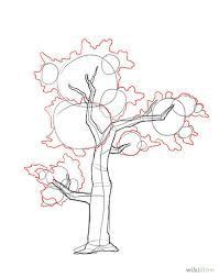 image result    draw realistic trees step  step