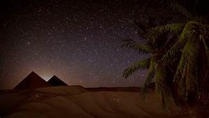 Seamless animation desert sand storm at night with palm ...