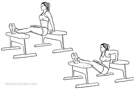 Bench Dips Workout by Weighted Bench Dips Workoutlabs