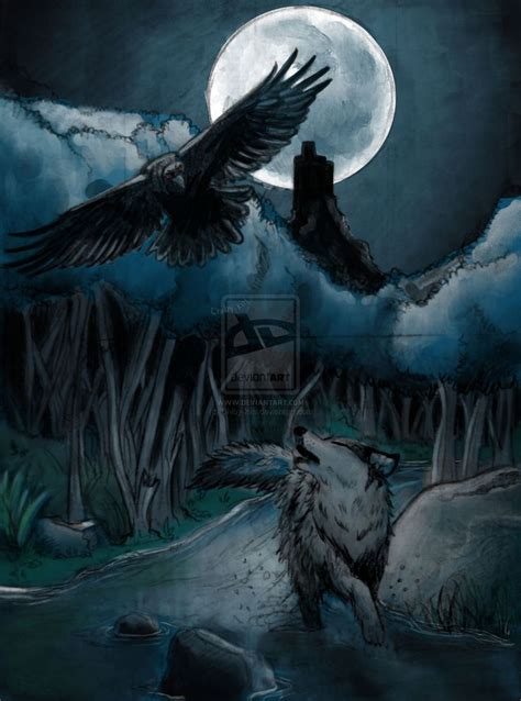 raven wolf  images  pinterest crows