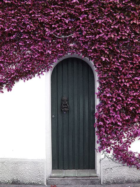 beautiful doors    lead   worlds