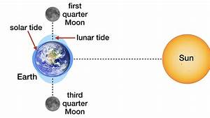Solar And Lunar Tides Designed For Complex Life