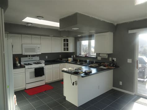 grey and white cabinets grey and white kitchens tjihome