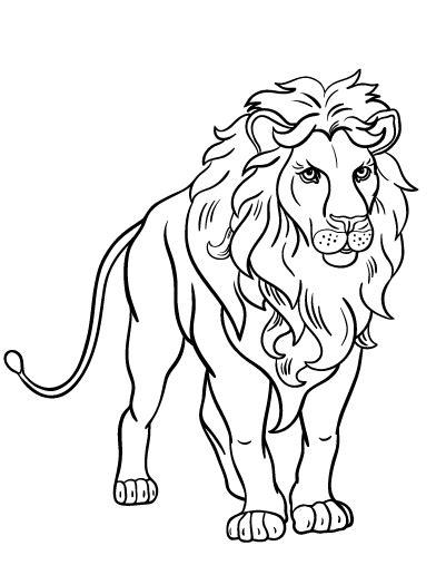 lion coloring pages bestofcoloringcom