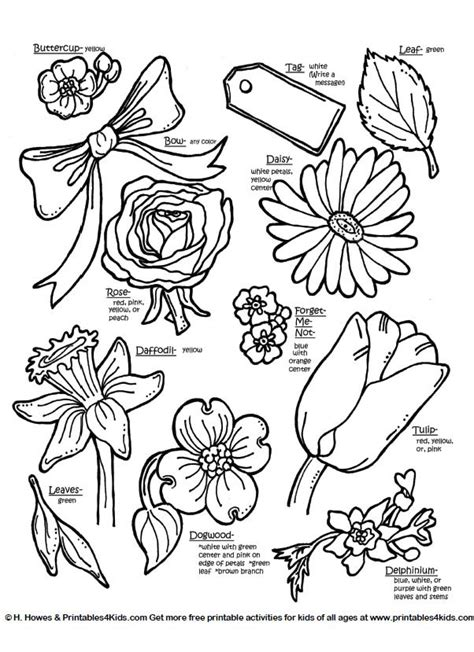botanical flowers  names printables  kids  word search puzzles coloring pages