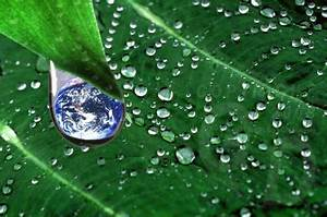 Green Environment Essay Dissertation Problem Statement Clean And  Green Environment Essay Topics
