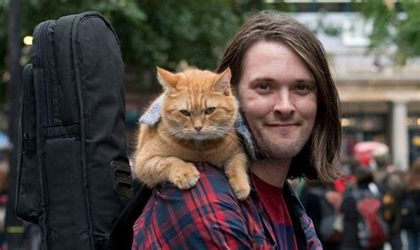 'a Street Cat Named Bob' To Shoot In London From Oct 25