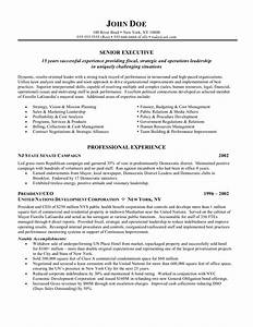 ceo chief executive officer resume 03oqofgo sample With ceo resume template