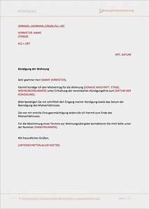 Kündigung Mietvertrag Vorlage Mieter : 34 angenehm k ndigungsschreiben vorlage wohnung mieter vorr te beste vorlage ideen ~ Buech-reservation.com Haus und Dekorationen