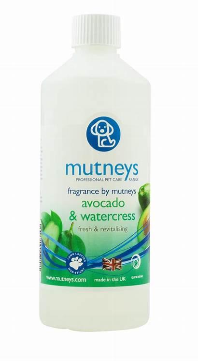Watercress Fragrance Avocado Spray Mutneys 500ml Sprays