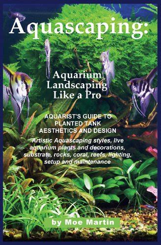 aquascaping guide read quot aquascaping aquarium landscaping like a