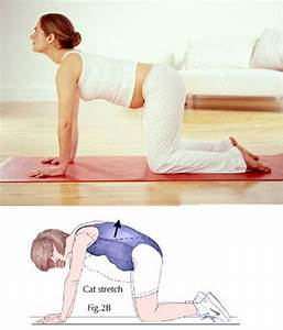Guide Pregnant Women To Do Exercises