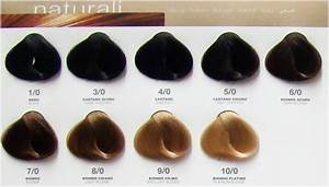 Rusk Color Chart Platinum Permanent Hair Color Chart Bellamoi Alter Ego
