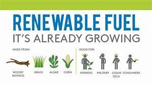 Renewable Fuels as an Alternative Energy sources