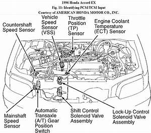 My 96 Accord Ex  Automatic  Has A Transmission Issue In
