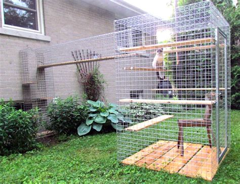 catio ideas give your feline friend safe access to the outdoors with a catio