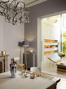 deco salon gris idees couleur et photo pour s39inspirer With meuble de salle a manger avec cuisine couleur gris ardoise