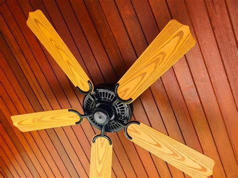 ceiling fan dust repellent why i love my 30 day cleaning list king of maids blog