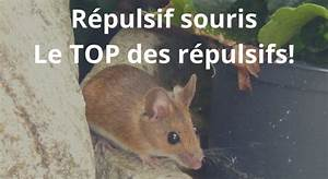Répulsif Souris Efficace : r pulsif souris le top des r pulsifs anti souris ~ Melissatoandfro.com Idées de Décoration
