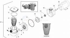 Waterway Center Discharge Pump Parts