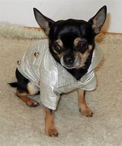 Regenmantel Für Hunde Mit Bauchschutz : hundebekleidung ~ Frokenaadalensverden.com Haus und Dekorationen