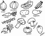 Vegetables Coloring Vegetable Pages Fruit Worksheets Pdf Wecoloringpage Garden sketch template