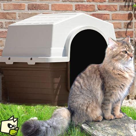 niche abris en plastique isol 233 pour chat