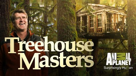 When Does Treehouse Masters Season 7 Start? Premiere Date