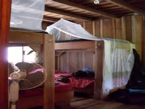 Stechmücke Im Zimmer : costa rica reisebericht costa rica ~ Bigdaddyawards.com Haus und Dekorationen