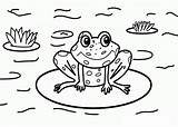 Coloring Pages Frog Nature Printable Drawing Cycle Coqui Sheets Print Frogs Cartoon Kid Landscape Toad Autumn Around Getcolorings Popular Getdrawings sketch template