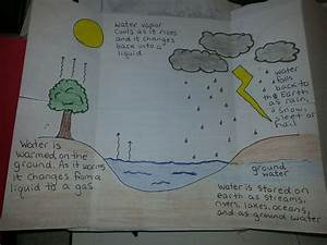 Inside Water Cycle Diagram