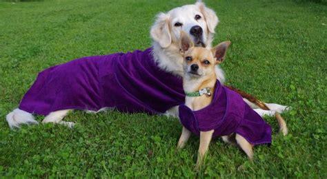 Bademantel Hunde Mikrofaser