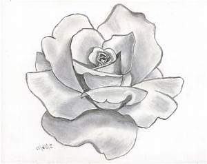 17 best ideas about Easy Rose Drawing on Pinterest | How ...