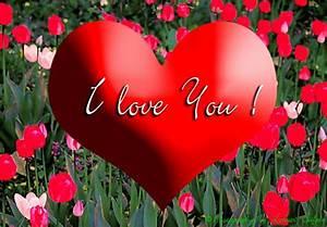 Blume Der Liebe : valentinstag der tag der blumen und der liebe valentinstag karten und gru karten ~ Whattoseeinmadrid.com Haus und Dekorationen