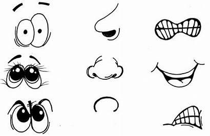 Partes Ojos Cara Bocas Aprender Infantil Actividades