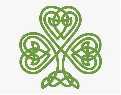 Celtic Irish Clipart Patricks Shamrock Clip Shamrocks