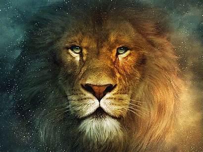 Leon Pantalla Aslan Narnia Wallpapers Lion Fondo