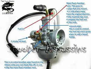 29 49cc Carburetor Diagram
