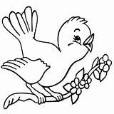 Coloring Bird Pages Printable Getcolorings Getdrawings sketch template