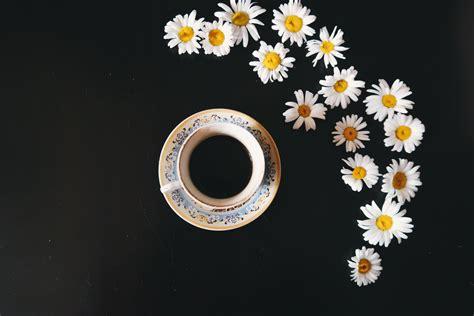 stock photo  coffee coffee machine cup