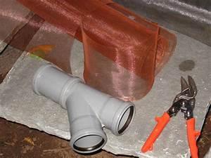 Regenwasserfilter Selber Bauen : regenwasserfilter selber bauen anleitung xe99 hitoiro ~ Lizthompson.info Haus und Dekorationen