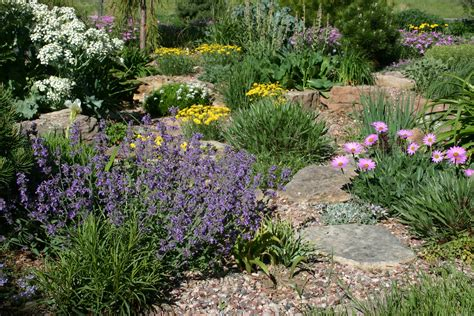 xeriscape garden plants colorado xeriscape on pinterest colorado xeriscaping and perennials