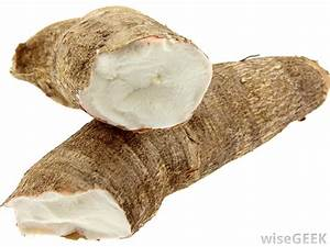 What is a Tuber? (with pictures)